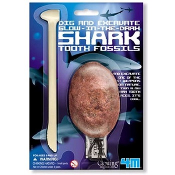 4m-Fm918 Kidzlabs Dig Glow Shark Tooth Fossils